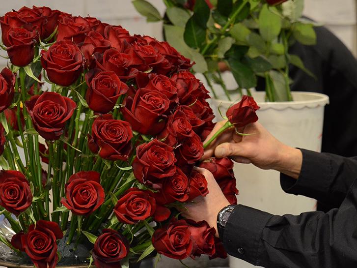 赤バラのアレンジメント制作の画像