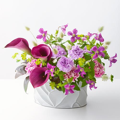 紫のカラーとカーネーションのアレンジメントの画像