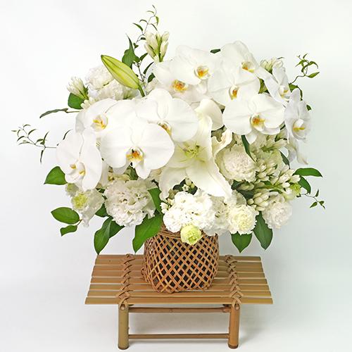 白い胡蝶蘭のお供え花