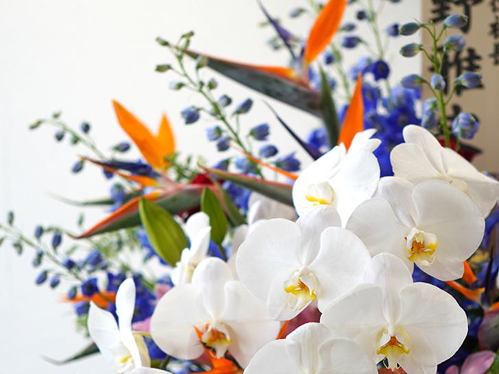 胡蝶蘭を使用したスタンド花の拡大画像