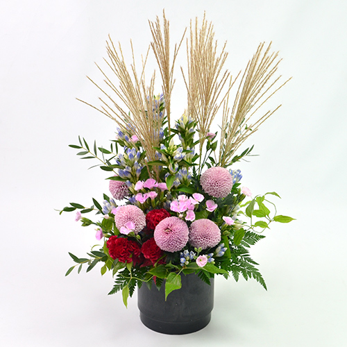 淡いピンクの菊(マム)とケイトウやリンドウを使ったアレンジメント