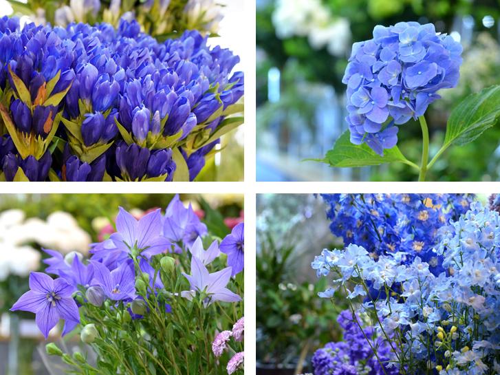 青色の花々
